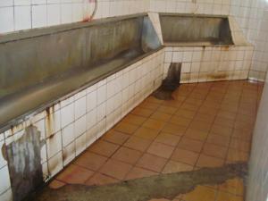 banheiros-jacare-2-pq