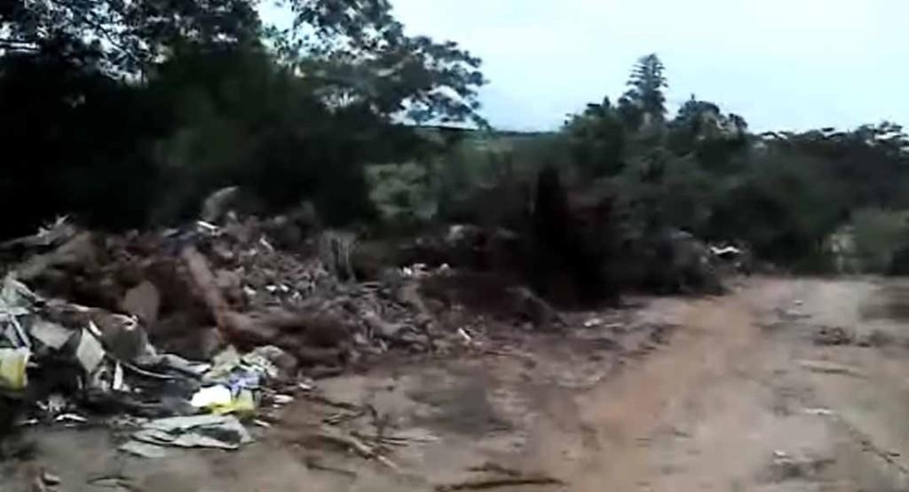 crime ambiental3