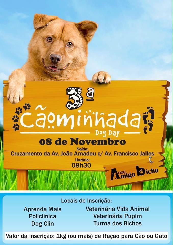 CÃOMINHADA DOG DAY FLAYER